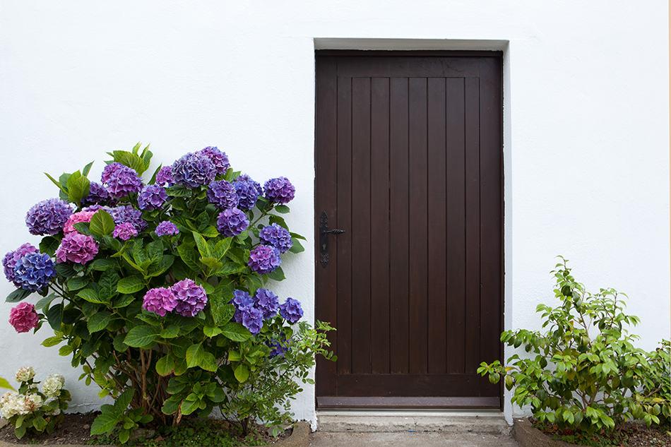 Durable hardwood front door