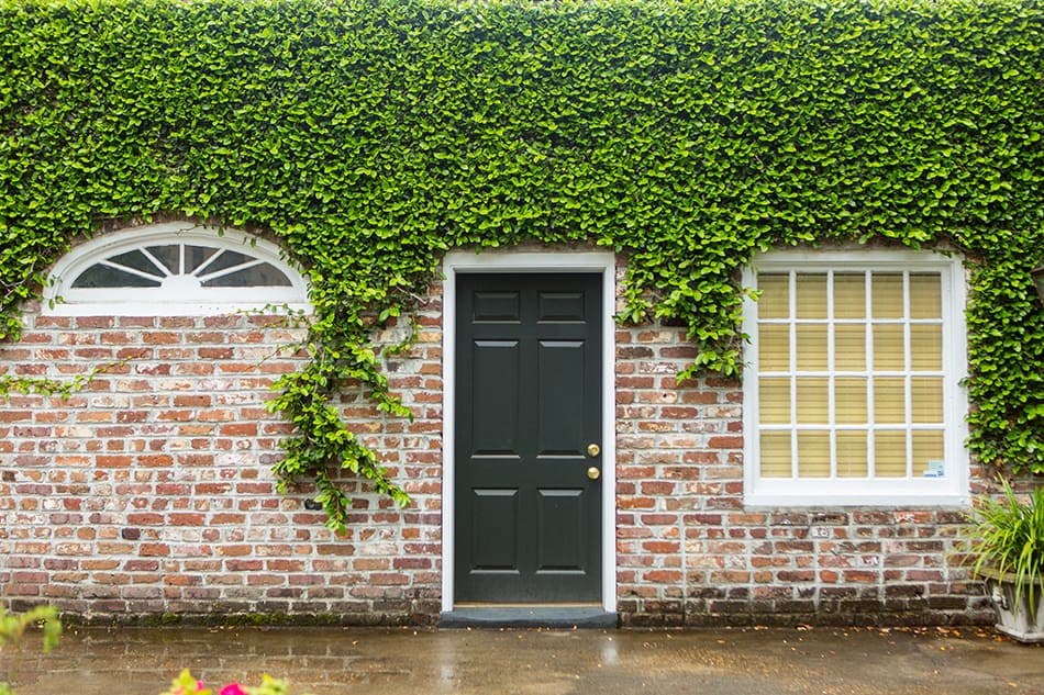 Fiberglass front door in black for aesthetic appeal