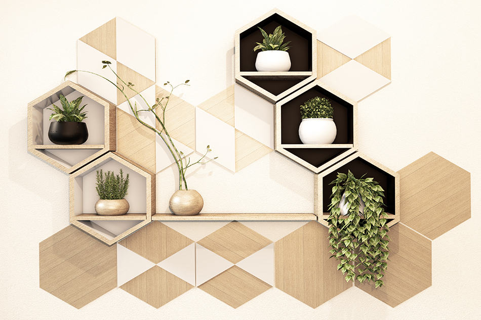 Hexagon shelves decorated with plants