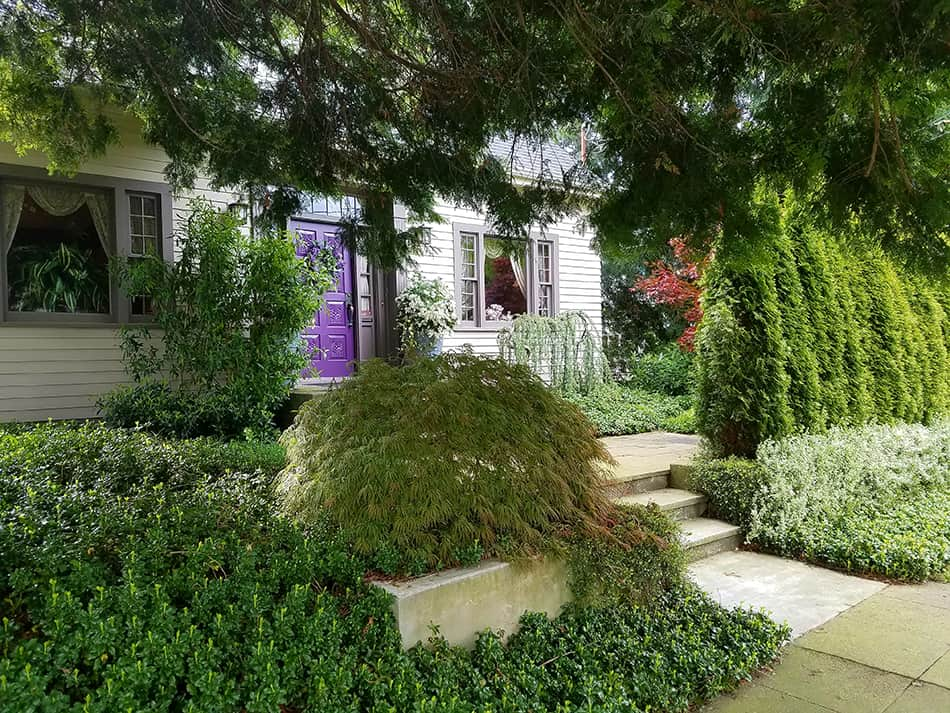 Raised Purple Door with a Landscaped Exterior