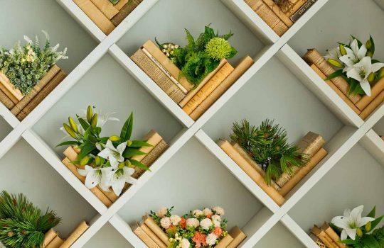 Stylish Bookshelf Decorating Tips and Tricks