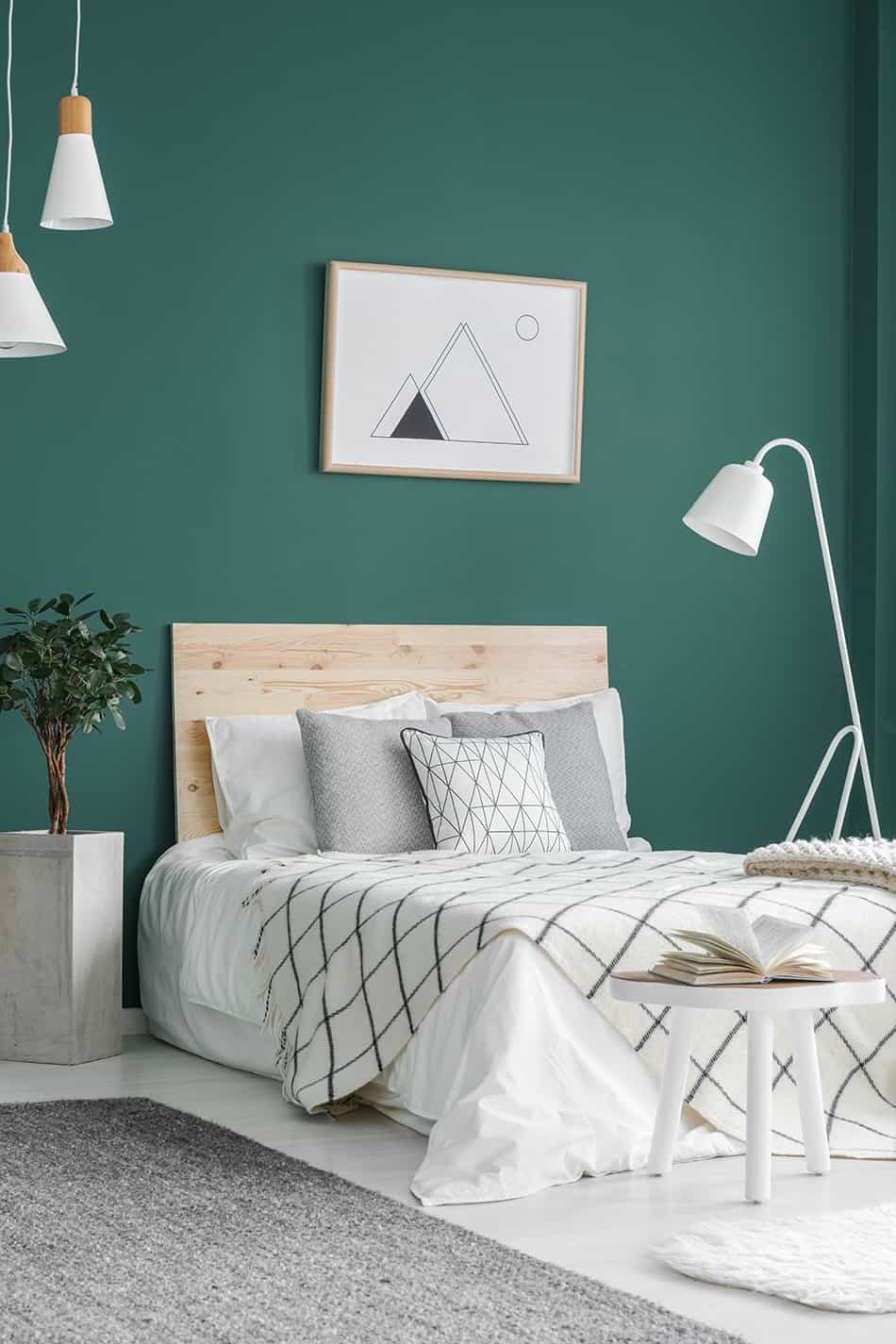 Teaming up Teal with Geometrical Patterns