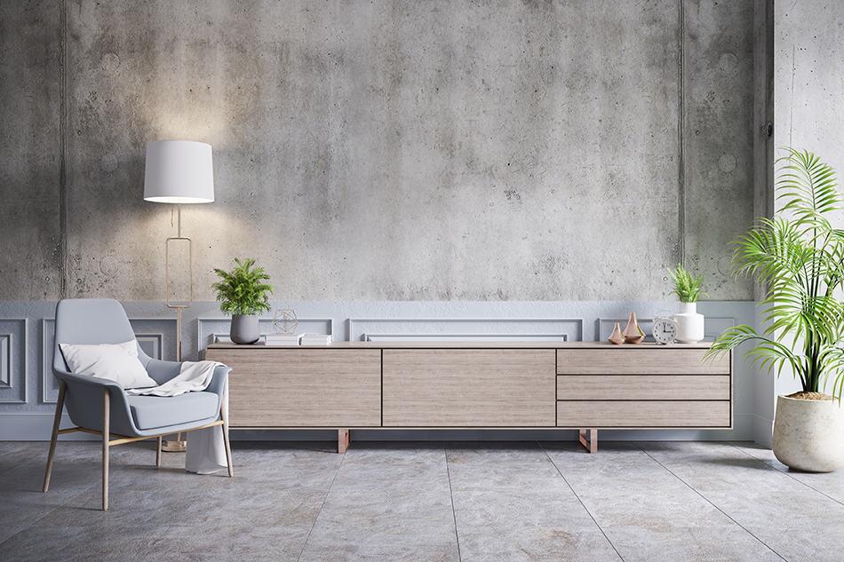 Concrete Walls and Indoor Plants