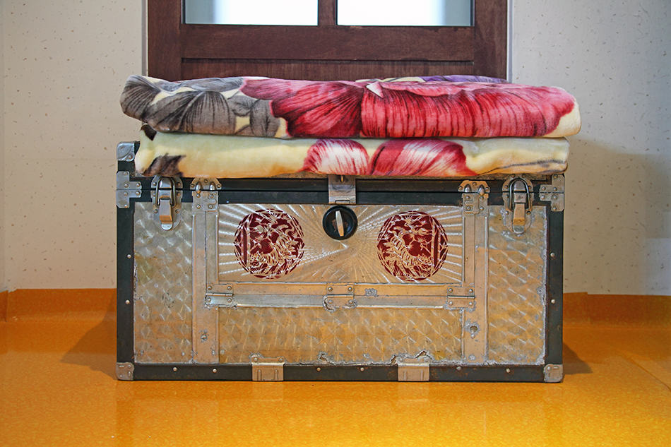 Store blankets in an Antique Trunk or Chest