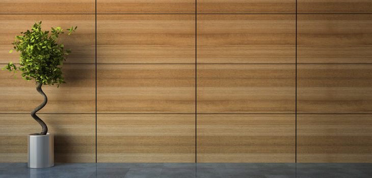 Types of Wood Wall Paneling