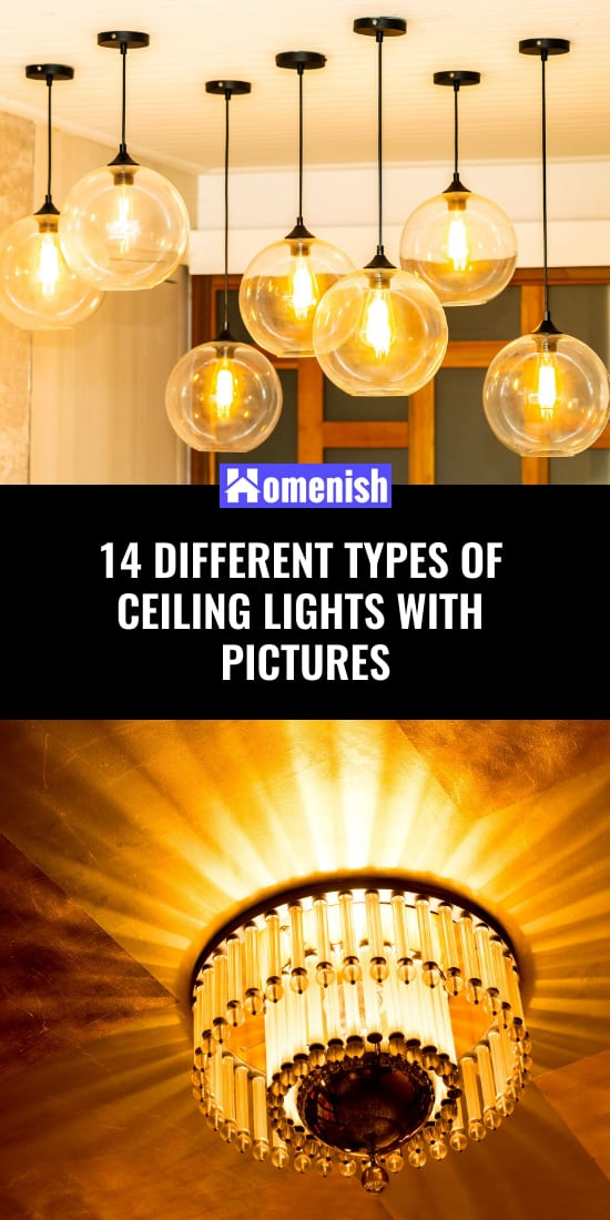 14 Different Types of Ceiling Lights with Pictures