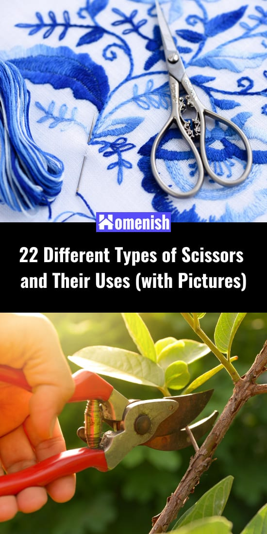 22 Different Types of Scissors and Their Uses (with Pictures)