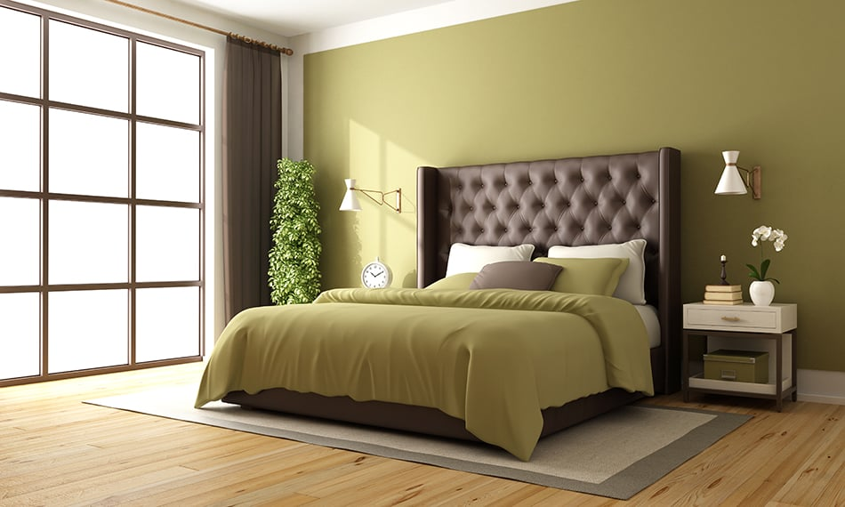 Brown and Green as Classic Hues