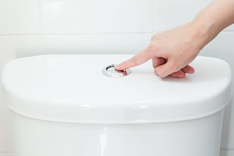 Push Button Flush