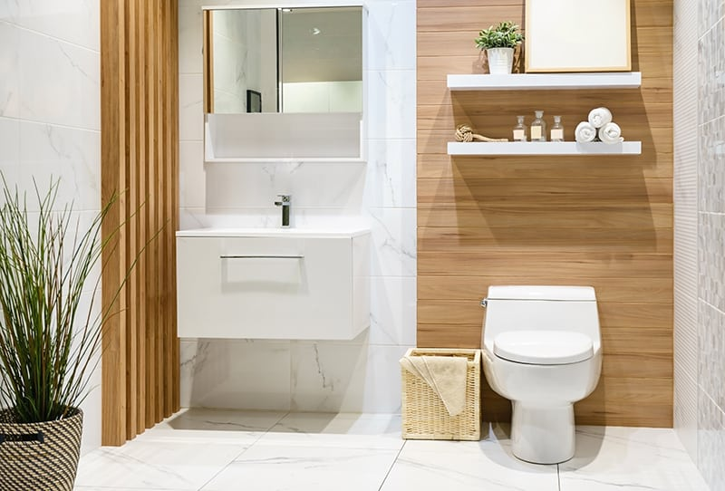 Different Types of Toilets for the Bathroom with Pictures