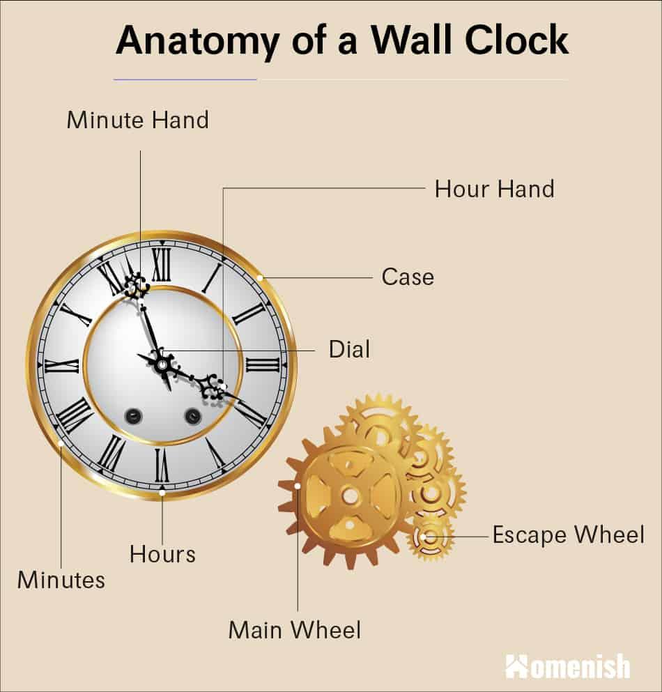 Anatomy of a wall clock