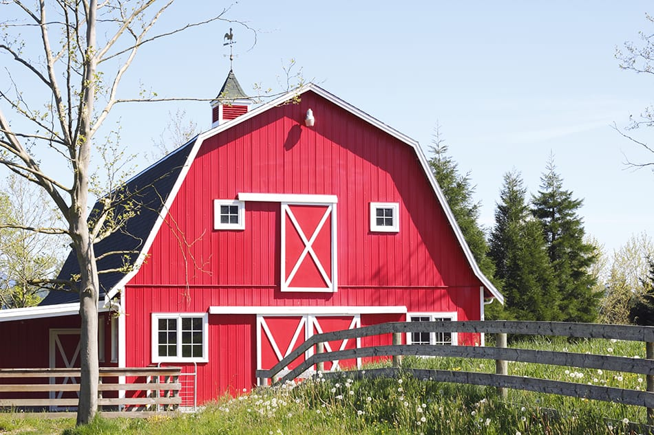 Barn Roof Styles