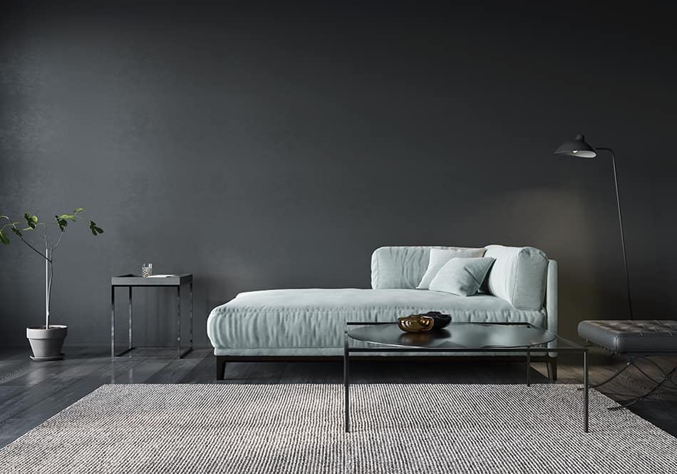 Color Carpet Goes with Gray Walls