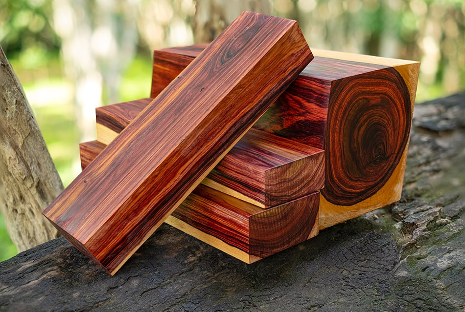 17 Most Expensive Wood – Can You Name Them?