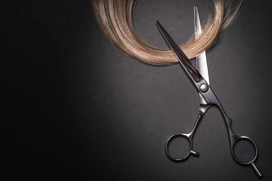 Parts of Scissors