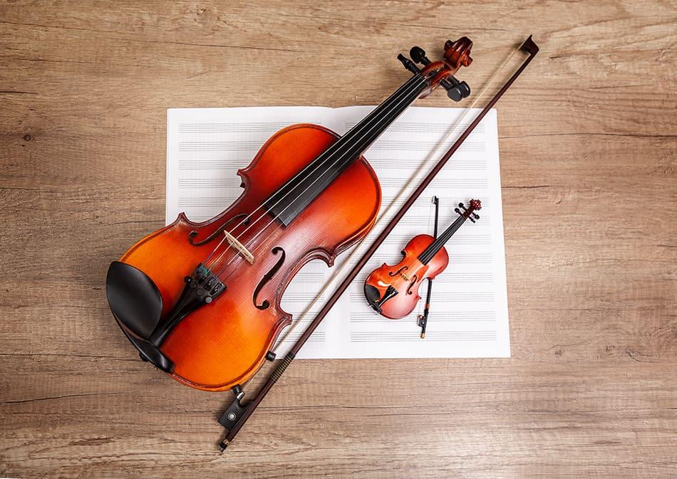 Parts of a Violin (Full Diagram Explored)