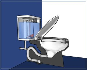 Parts of a toilet explained