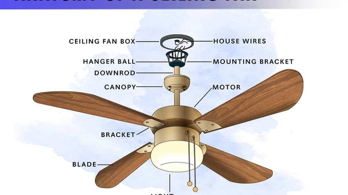 8 Parts Of A Ceiling Fan With Illustrated Diagram Homenish