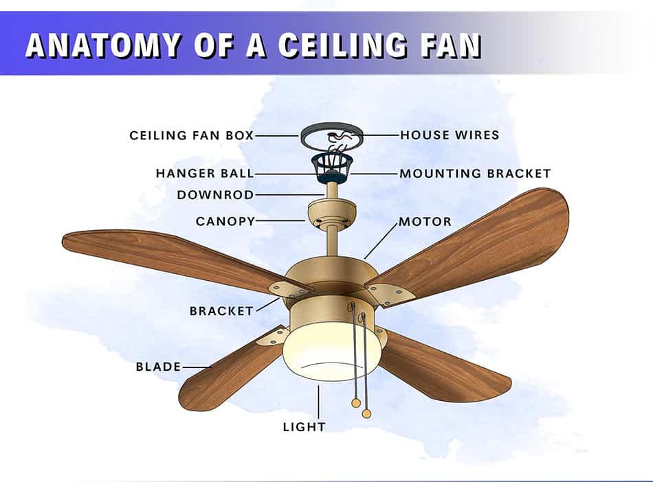 Anatomy of a Ceiling Fan