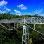 Parts of a Bridge
