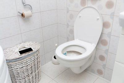 Types of Toilet Seats