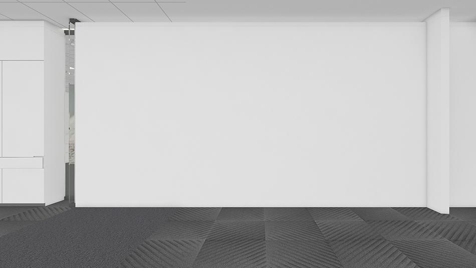 8 Popular Carpet Colors for White Walls