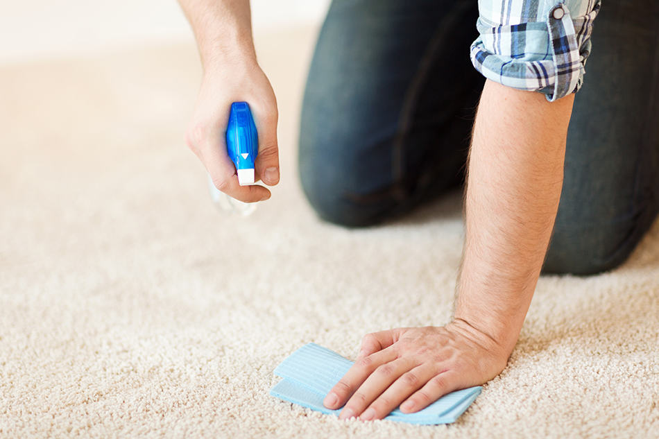 How to Get Flarp Out of Carpet