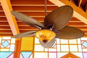Ceiling Fan Colors